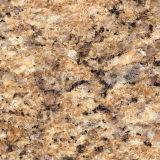 Natural Customized Golden Granite for Floor