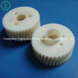 Top Quality Plastic POM Acetal Worm Wheel