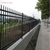 Ornamental Picket Fence/ Wrought Iron Garrison Fence (XM3-21)