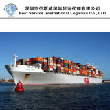 Ocean Shipping Forwarder From Dalian to Skikda by FCL Shipment