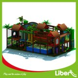 Kids Indoor Center LLDPE Plastic Indoor Playground Equipment for Fun