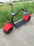 CE and RoHS Brushless DC Motor Mobility Citycoco Scooter with 1000W Motor