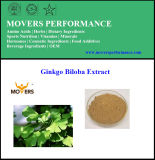 High Quality Pure Ginkgo Biloba Extract