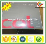 White Color Offset Printing Book Paper