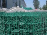 Factory Sale PVC Coated Euro Fence