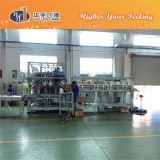 Pet Bottle Rotary Blow Moulding Machine From Hy-Filling