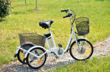 Hot Sale 3 Wheel Electric Bicycle with Big Baskets for Elder