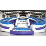 Snow Man Inflatable Dry Slide with Best Price