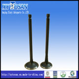 Engine Valve for VW Vr6/ Audi/ Polo/ Bora/ Passat (ALL MODELS)