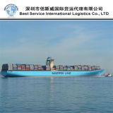 Sea Shipment Logistic Agent / Shipping Container / Freight Forwarder (FCL 20′′40′′)