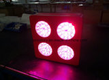 Modern Type 72 X 3W LED Grow Lighting Red: Blue: Yellow=7: 1: 1 for Medical Plants