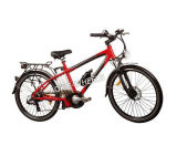 "20"" Alloy Frame Electric Bicycle with Shimano Derailleur (TDE-015)"