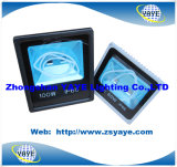 Yaye 18 Newest Design Top Sell 100W/60W Outdoor LED Flood Light & 100W/60W Outdoor LED Tunnellight with Ce/RoHS