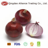 Chinese Fresh Purple Onion with Best Price