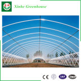 Intelligent Po/ PE Film Greenhouse for Agriculture