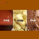 Natural Cocoa Butter with Best Quality
