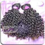 Lokshair Top Quality Virgin Brazilian Hair Weave/Weft/Weaving (LOKSHAIRCURLY01)