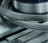 High Quality Titanium Coil Wire for Medical