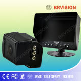 Rearview System with CCD Camera