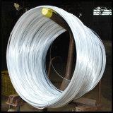 Bwg18 Electro Galvanized Tie Wire