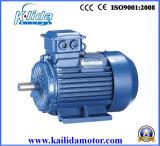 Iec Three Phase Induction Motor (Y2)