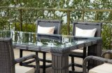High Quality Outdoor Rattan Dining Table (CNS-2120)