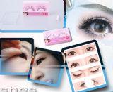 OEM High Quality Colorful False Eyelash