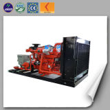 Highly Technical Lhng500 Biogas Generator with Power Genset for Sale