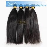 Peruvian Virgin Human Hair Weaving (KBL-pH-ST)
