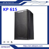 Good Quality (KP 615) Audio Equipment Professional Speaker
