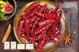 Hot Chaotian Chilli