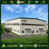 Prefab Steel Structure Construction Warehouse Building (LS-SS-551)