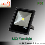 CE Approved 100W LED Floodlight