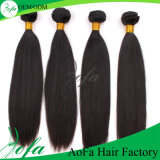 China Factory Wholesale High Quality Human Hair for Women