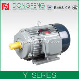 Y Series 3 Phase AC Induction Motor with Ce Certificate