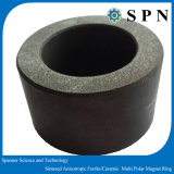 Permanent Ceramic/ Ferrite Sintered Magnet Rings for Micro Motor