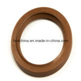 High Performance Dr2 61*79.5*9.5/11f Oil Sealing Hok Brand OEM/ODM Accepted