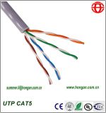 UTP Cat5 Data Cables in Stock with Low Price