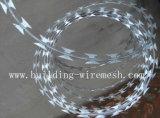 Best Price Concertina Razor Barbed Wire Coil