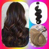 Human Hair Wig/ Remy Hair Pieces /Hair Bundles/Hair Weft/Hair Weaves/Toupees/Hair Extension