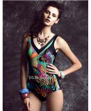 Luxury Push up Swimwear Tankini Plus Siza Swimsuits