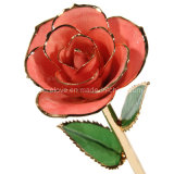 Lovely Gift for Valentine's Day- 24k Gold Deep Blue Rose (MG011)