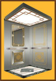 Fjzy-High Quality and Safety Home Lift Fjs-1618
