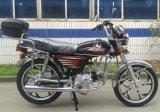 New Cheap Popular 50cc 110cc Cub Motorcycle Motorbikes (HD50Q)