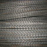 Competitive Price Cold Rolled Steel Bar