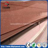 Building Material HPL Fireproof Board/Waterproof MDF
