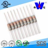 RF10 Coating Fusible Resistor with UL