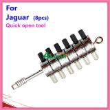 Lock Cylinder Quick Opening Tool for Jaguar (8PCS)