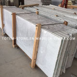 Polished Natural Grey G603 Stone Granite for Tile, Countertop, Slab