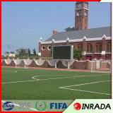 Football Stadium and Garden of Fire Resistance Artificial Grass